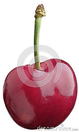 Free Cherry Stock Images - 231364