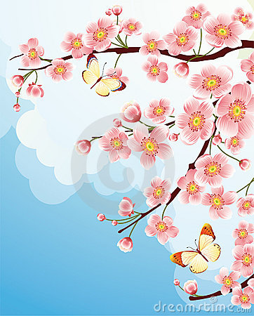 Free Cherry Blossom Royalty Free Stock Photos - 4402098