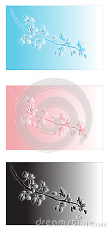 Cherry Blossoms Designs