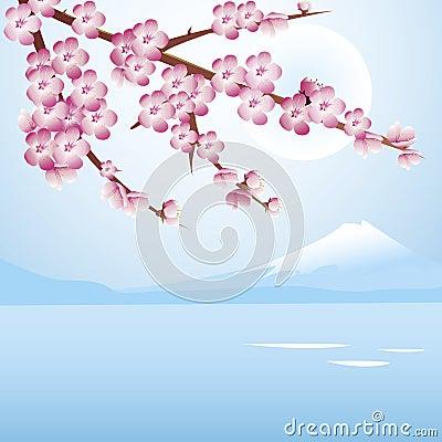 Cherry blossom blue sky