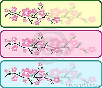 Cherry Blossom Headers Stock Photography - Image: 13789722