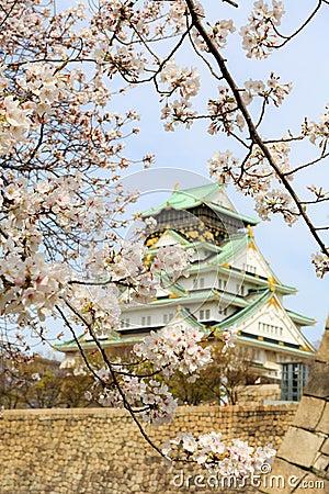 Free Cherry Blossom In Osaka Castle, Osaka, Japan Stock Photography - 49367512