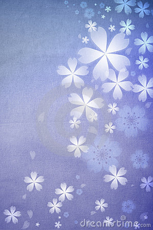 Cherry blossoms background