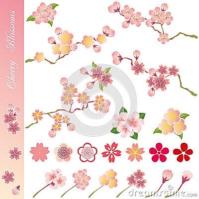 Cherry blossoms icons set