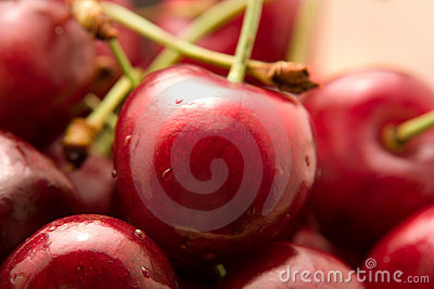 Cherry Close-up