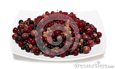 Cherry, currants, gooseberries