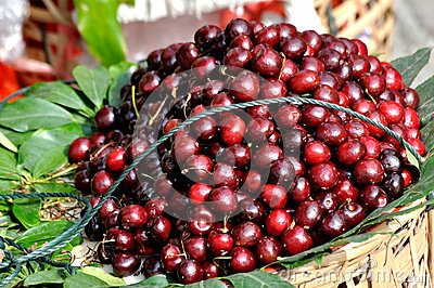 Cherry in deep color