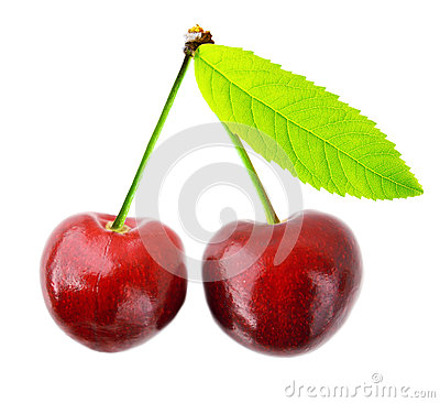 Free Cherry Isolated Royalty Free Stock Images - 32898709