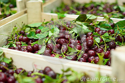 Cherry with leaves in wood boxes in supermarket