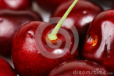 Cherry macro background