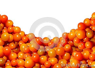 Cherry Tomato Border Design