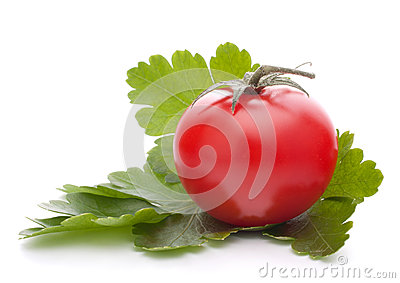 Cherry tomato and parsley leaves still life