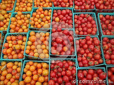 Cherry Tomatoes with colors half red, half orange