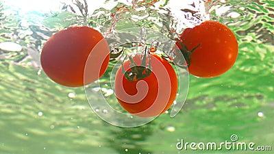 Cherry Tomatoes Falling in Water met Bellen in Langzame Motie bij 1500 fps Onderwater Geschoten Tafelblad stock footage