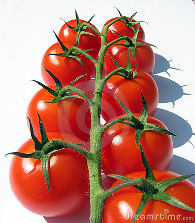 Free Cherry Tomatoes On The Vine Stock Photography - 206332