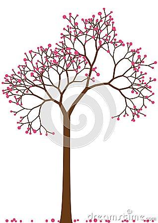 Cherry tree,