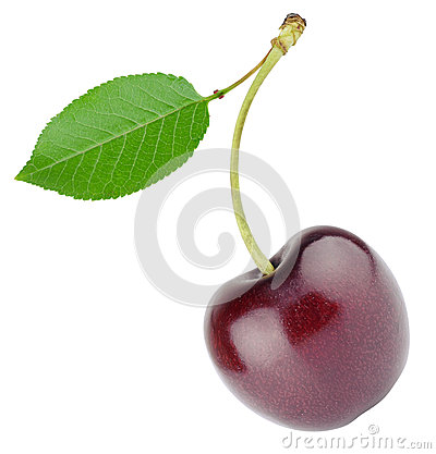 Free Cherry With Sheet Royalty Free Stock Photography - 41119677