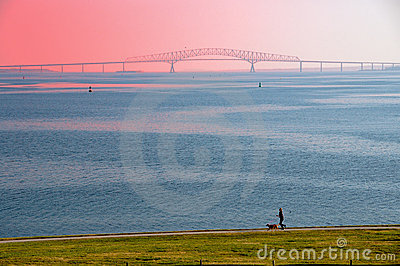 Chesapeake Bay Bridge and Runner