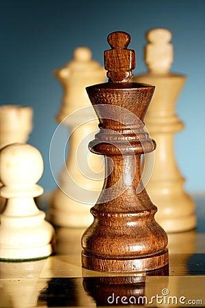 Free Chess Royalty Free Stock Photo - 3236705
