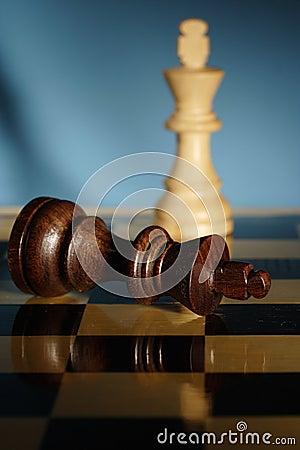 Free Chess Royalty Free Stock Photos - 3236718