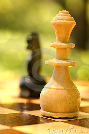 Free Chess In The Park Royalty Free Stock Images - 17948689