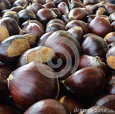 Free Chestnut Stock Photos - 80118063