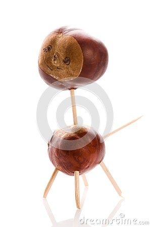 Chestnut toy