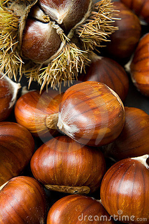 Free Chestnuts Stock Images - 2932224