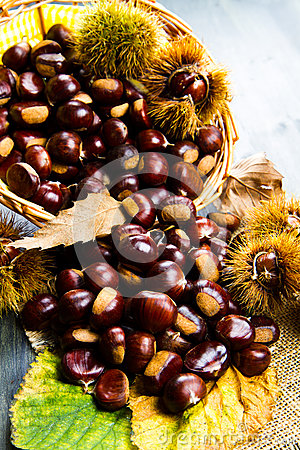 Free Chestnuts Stock Photography - 45395682
