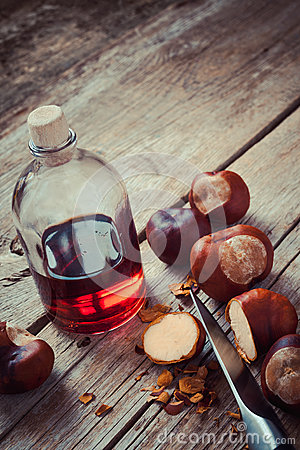 Free Chestnuts And Bottle With Healthy Tincture Stock Images - 45354124
