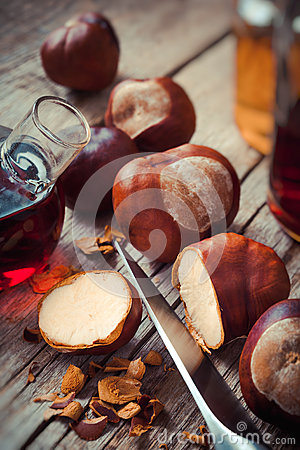 Free Chestnuts And Bottle With Tincture Stock Photos - 45353633