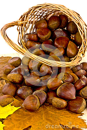 Chestnuts in basket