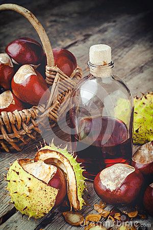 Free Chestnuts In Basket And Bottle With Tincture Stock Image - 45413091