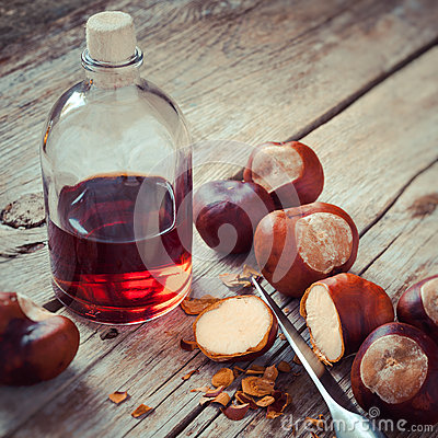 Free Chestnuts, Knife And Bottle With Tincture On Wooden Table, Herba Royalty Free Stock Photography - 45353637