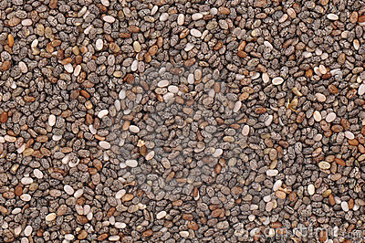 Chia Seeds Royalty Free Stock Images - Image: 20834319