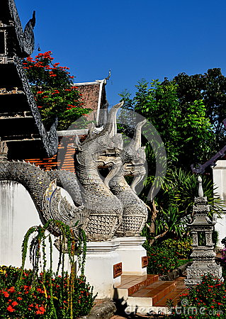 Chiang Mai, TH: Twin Naga Dragons at Temple