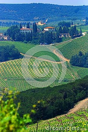 Free Chianti Vineyards Stock Photos - 2742563