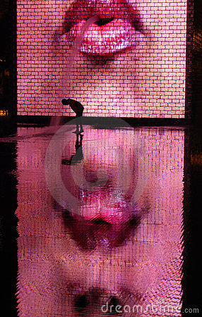 Free Chicago Crown Fountain By Jaume Plensa Royalty Free Stock Images - 7002309