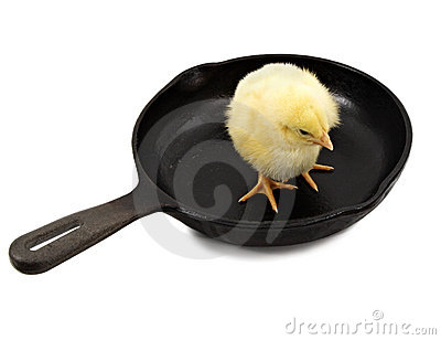 Chick on a cast iron pan
