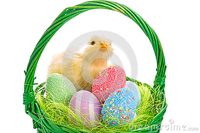 Chick and Easter basket with eggs
