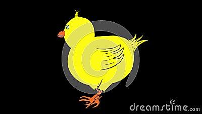 Chick Walking-Animated-Transparent Stock Photo