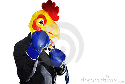 Chicken boxing in a suit isolated