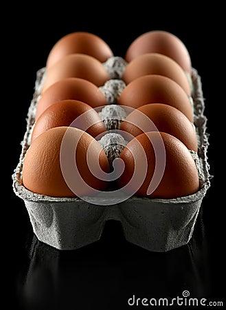 Chicken brown egg