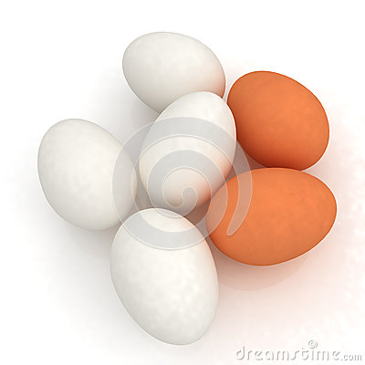 Chicken eggs on a white background