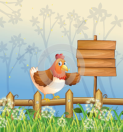 A chicken near a signboard at the woods