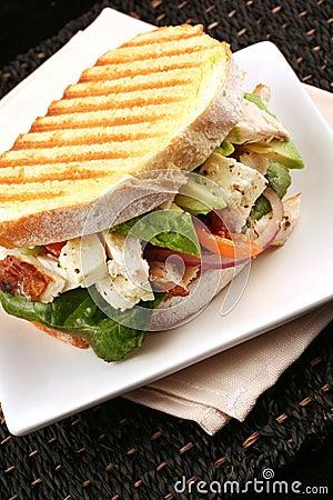Free Chicken Sandwich Stock Photos - 2735243