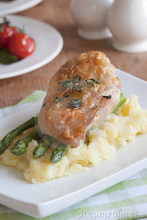 Free Chicken With Mashed Potatoes Stock Photo - 21875720
