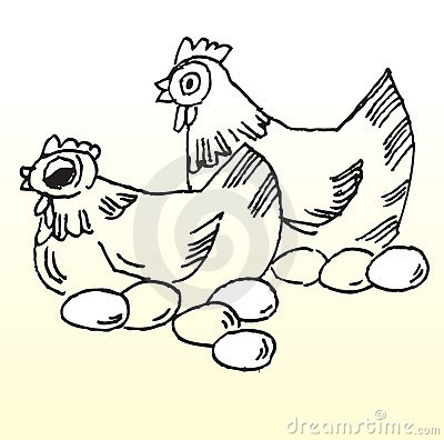 external image chicken-lay-eggs-thumb6150640.jpg