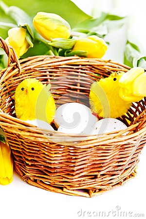 Chicks in basket