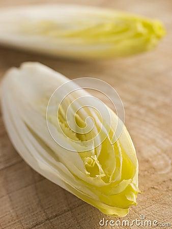 Free Chicory Royalty Free Stock Photos - 7229708